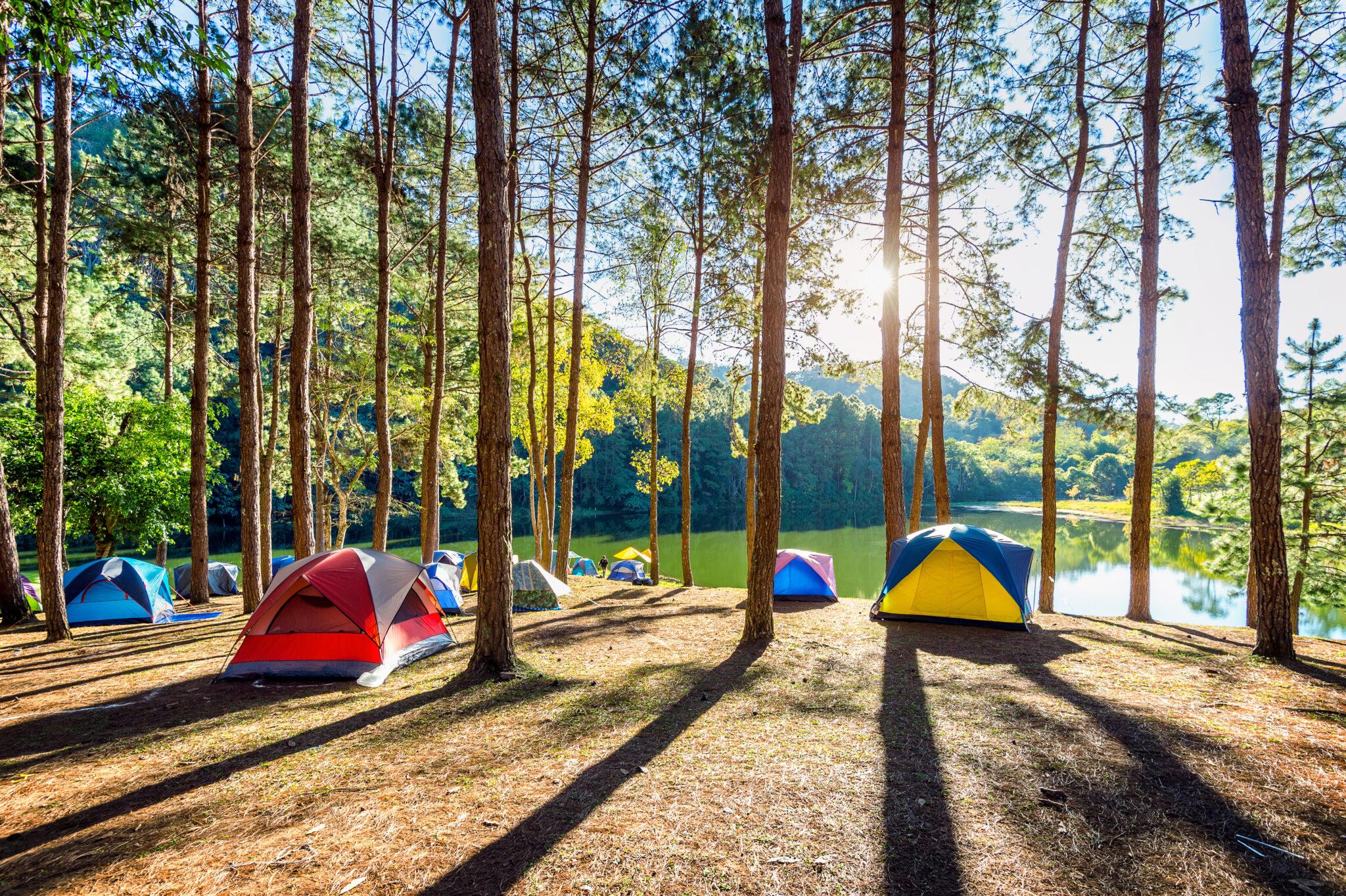 campings instalan desfibriladores
